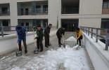 校园扫雪行动